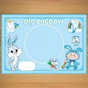 8-adet-mavi-dis-bugdayi-american-servis-tabak-altligi-sunum-4273-750x750